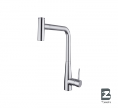 P-8011 Single Handle Pull-Out Kitchen Faucet with Spray