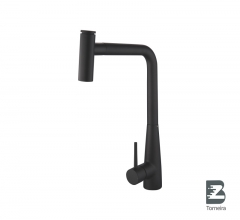 P-8010 Single Handle Black Matt Pull-Out Kitchen Faucet with Spray
